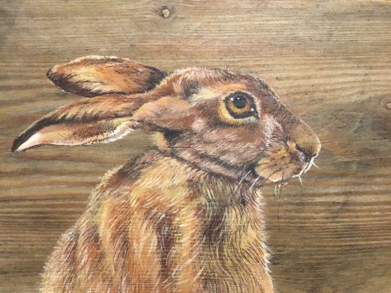 Hare - Georgia Satchell